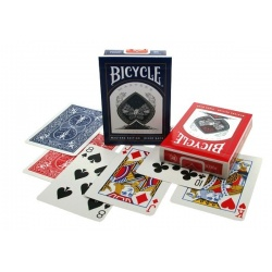 Bicycle Master Edition